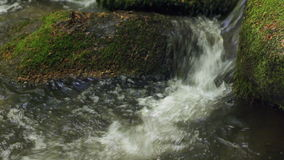 Water spring in high mountains - closeup with sound. HD 1080 static: water stream on sunny summer day; closeup; on site sound stock video footage