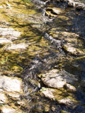 Water. Spring stream, watercourse, with shadows from trees. Stock Photography