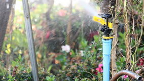 Water springer stock video