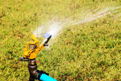 Water springer for watering the plant Royalty Free Stock Photos