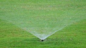 Water sprinkle Royalty Free Stock Photo