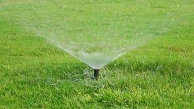 Water sprinkle stock footage