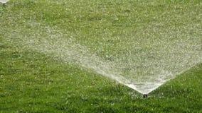 Water sprinkle stock video