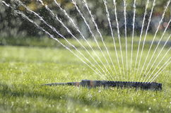 Water sprinkler 5 Stock Image