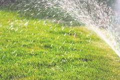 Water sprinkler with droplets above green grass stock photo