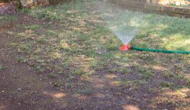 Water sprinkler on a dry patch of lawn royalty free stock photography