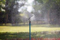 Water sprinkler in garden Stock Photos