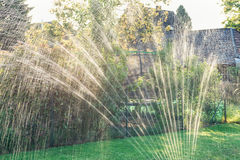 Water sprinkler in the garden produces light reflections during sundown.  stock photography