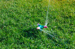 Water sprinkler on grass. Closeup of rotating sprinkler on green grass Stock Photography
