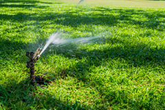 Water sprinkler on green grass field Royalty Free Stock Images