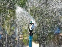 Water from sprinkler Stock Photo