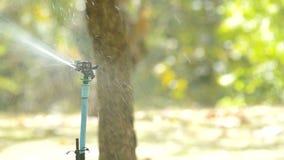 Water sprinkler spraying stock video