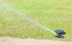 Free Water Sprinkler System Watering On Fresh Green Grass. Stock Photography - 39883122