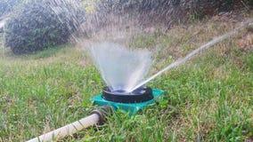 Water sprinkler watering lawn stock video