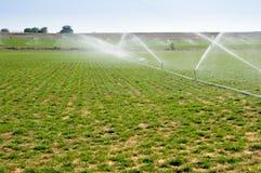 Water sprinklers royalty free stock photos