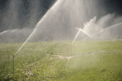 Water sprinklers. Aimed in all directions royalty free stock photos