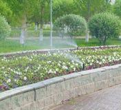 Water sprinklers Stock Image