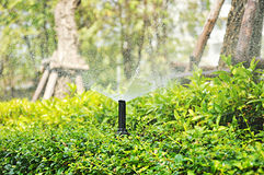 Water sprinklers spraying over green bush Royalty Free Stock Photos
