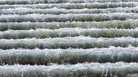 Water stairs. Rapid stream of water flowing in the bottom step Stock Photo