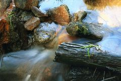 Water and stones. Close up stream and stones Stock Photo
