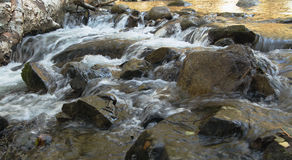 Water and stones. Fast foamy stream of the mountain small river among stones Stock Images