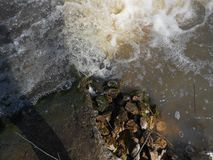 Water and stones. Royalty Free Stock Photography
