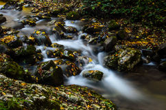 Water through the stones. Have a beautiful color Royalty Free Stock Images