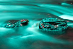 Water stones leaves Royalty Free Stock Photo