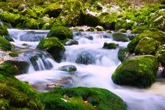 Water Stream Royalty Free Stock Photos