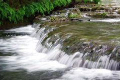 Water stream Stock Image