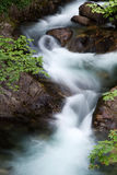 Water stream. Motion blurred water stream in the mountain Stock Photos