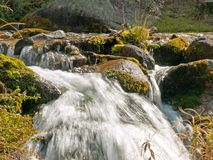 Water stream Stock Photography