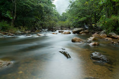Water stream. Royalty Free Stock Photography
