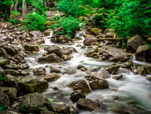 Water Stream. Stream of water at base of water falls Royalty Free Stock Photo