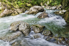Water stream Stock Images