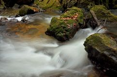 Water stream flowing  Stock Photography
