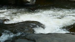 Water stream flowing on rock.  stock video footage