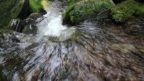 Water stream flowing among stones stock video footage