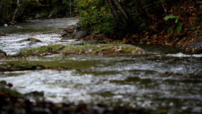 Water stream flowing white water stock video footage