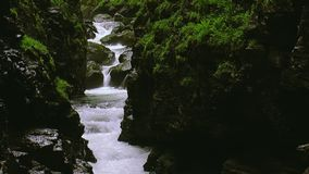 Water of stream flows between two mountains covered by greenery. Summer day. Landscape. Nature. Rock. Water of stream flows between two mountains covered by stock footage