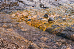 Water stream on a lava field Stock Photos