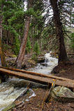 Water stream and log bridge Stock Photos