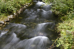 Water stream Royalty Free Stock Images