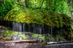 Water stream moss waterfall forest scenery spring stock image