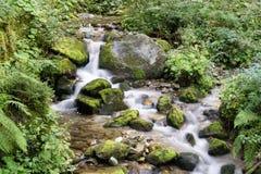 Water stream on mountain river, Dolomites Royalty Free Stock Photos