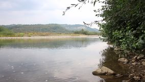 Water stream of a mountain river. It flows calmly in the valley. On the horizon are mountains with forests