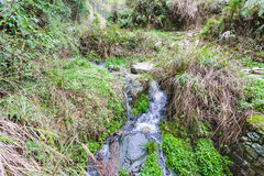 water stream on mountain slope in Dazhai country Royalty Free Stock Photos