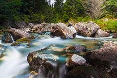 Water Stream - River Royalty Free Stock Photo