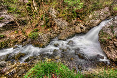 Water stream and rocks Stock Photos