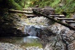 Water stream in Slovakian paradise Royalty Free Stock Photography